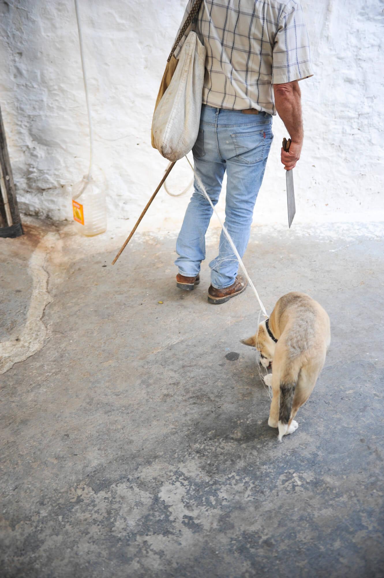 Là-bas / Le temps des Cyclades